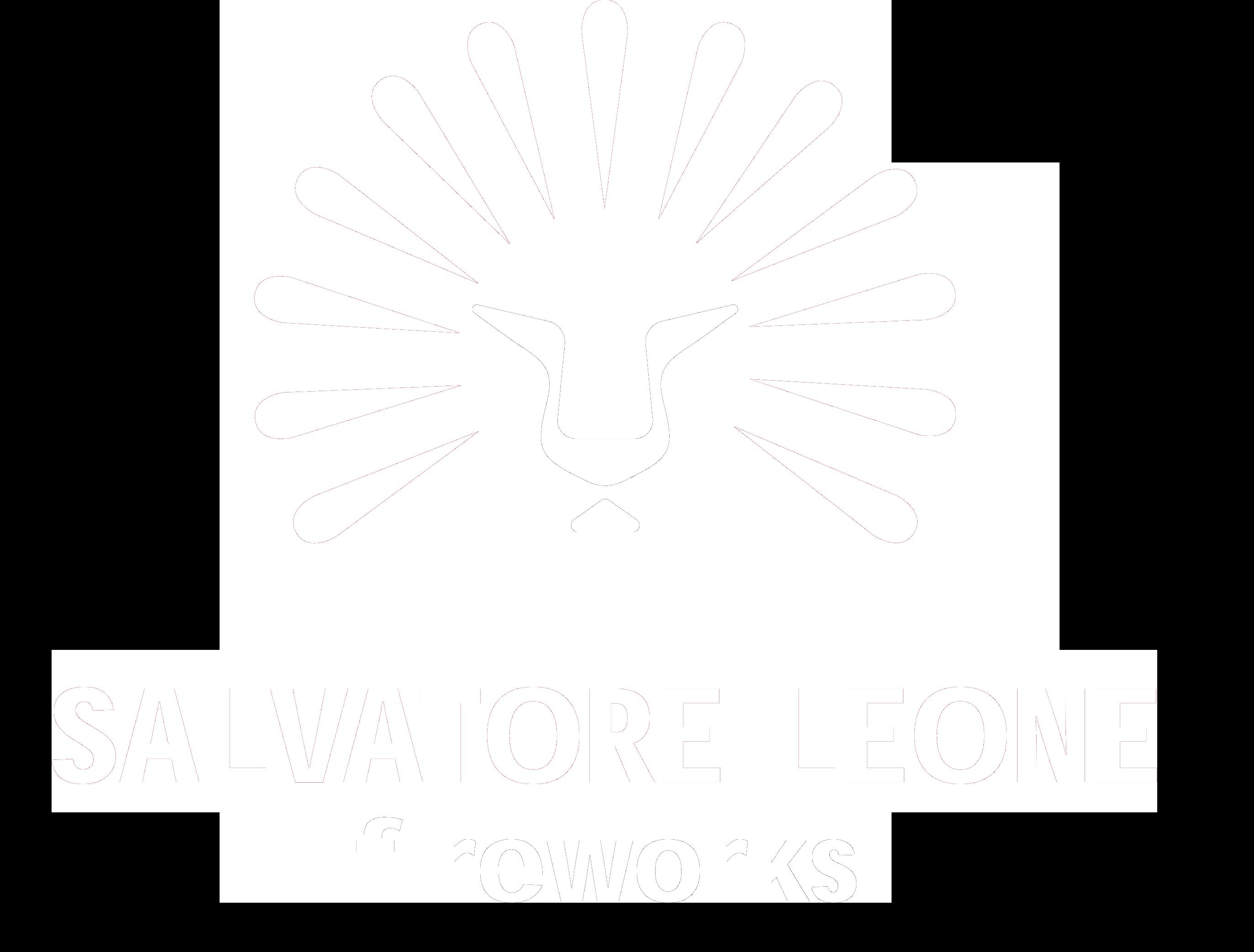 Salvo Leone Fireworks